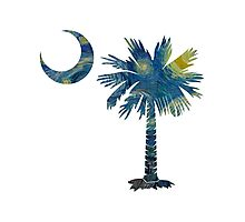 Starry Night Palmetto Moon Photographic Print