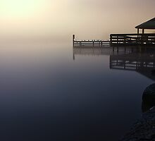 Foggy Night at Lilydale Lake #1 by Jason Green
