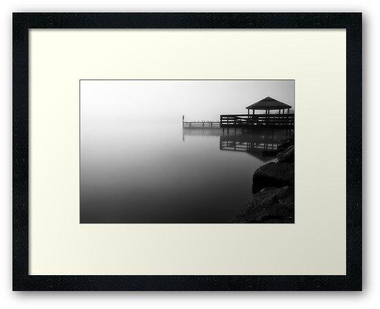 Foggy Night at Lilydale Lake #2 by Jason Green