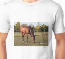 Lincoln - NNEP Ottawa, Ontario Unisex T-Shirt