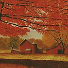 Upstate autumn by Mark Regni