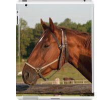 Holly - NNEP Ottawa, Ontario iPad Case/Skin