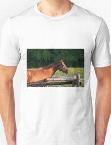 Holly - NNEP Ottawa, Ontario T-Shirt
