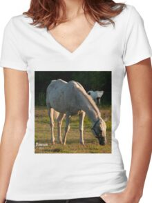Remembering Dawson - NNEP Women's Fitted V-Neck T-Shirt