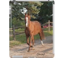 Chief - NNEP Ottawa, ON iPad Case/Skin