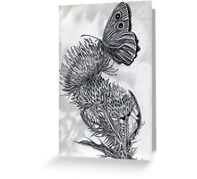 A Thistle and Butterfly Greeting Card