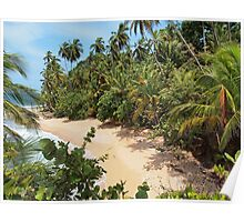 Wild tropical sandy beach with lush vegetation Poster