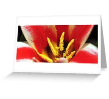 Between the tulips... Greeting Card