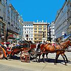 The Charm of Vienna  by Lanis Rossi