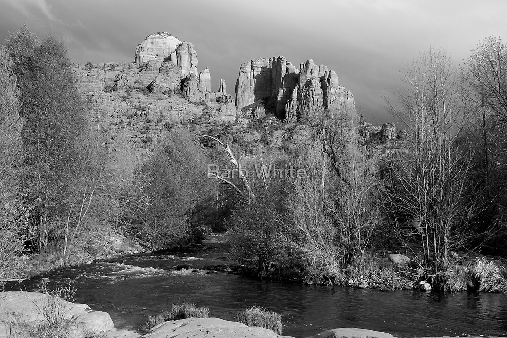 Cathedral Rock, Sedona, AZ (in Black and White) by Barb White