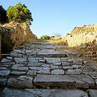 Steps of Carthage - Tunisa by jiggy