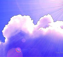 Spring's Renewal by Tori Snow