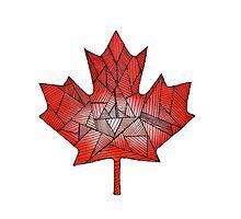 Maple Leaf  by Reilly Ballantyne