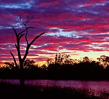 Red river sunset - Moree NSW by graphicscapes