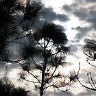 Sunset Through Clouds II by kaitonthekeys