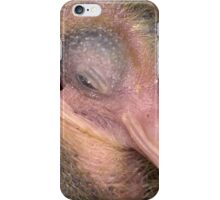 Young Pigeon iPhone Case/Skin