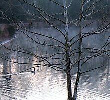 Morning Mist by kaitonthekeys
