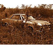 Hillbilly Riviera Photographic Print