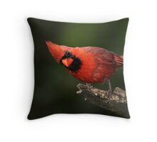 Just Looking In / Northern Cardinal Throw Pillow