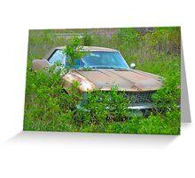 Hillbilly Riviera II Greeting Card