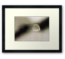 Chinese Lantern Framed Print