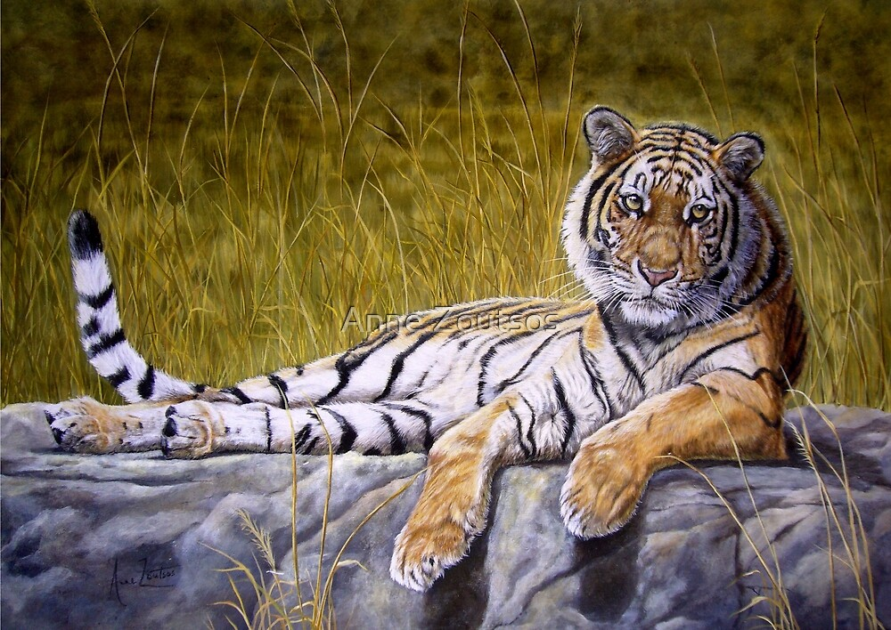 Tiger's Rest by Anne Zoutsos