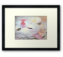 Can't you play? Framed Print