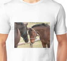 Griffin and Sparky - Ottawa, ON Unisex T-Shirt