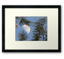 from Earth Framed Print