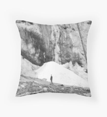 Mary Jane Falls Throw Pillow