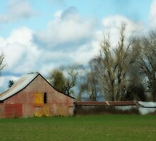 Old Barn by aussiedi