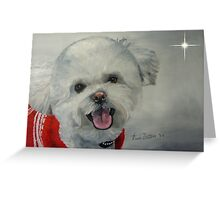 Little White Dog (Christmas Card) Greeting Card