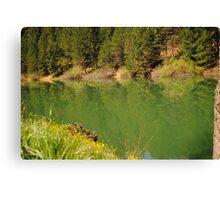 Rollins Lake Canvas Print