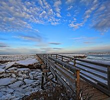Across The Ice & Toward The Horizon - Yarmouthport, Mass by T.J. Martin