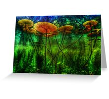 Underwater Lilies Greeting Card