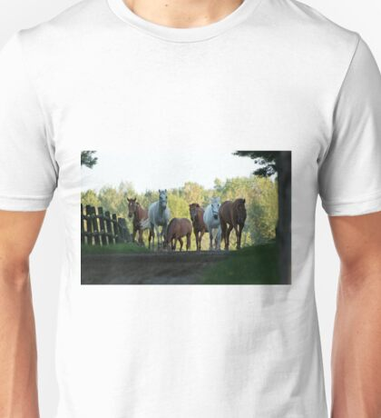 Even Horses Don't Have Great Mornings Unisex T-Shirt