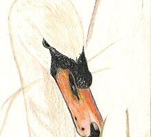 Swan Prince by Pamela Stirling