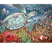Beyond the Coral Reef Photographic Print