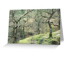 Path into wild woods Snowdonia Greeting Card