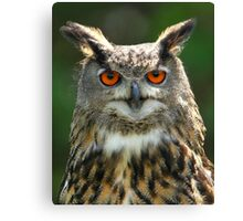 You talking to me? Canvas Print