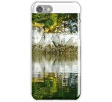 Geometrics iPhone Case/Skin