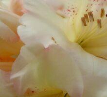 White Flower 2 v2 Sticker