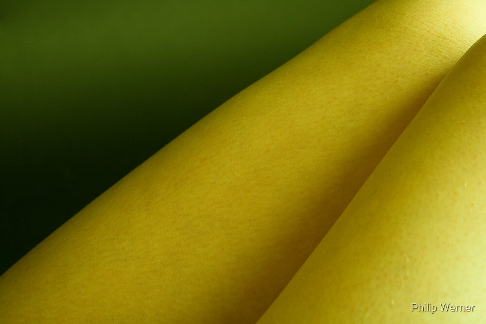 Green and Yellow Tones by Philip Werner