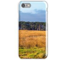 TREE LINED MEADOW iPhone Case/Skin