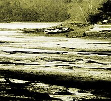Mud Flats on Mill Creek by Andrew  Bailey