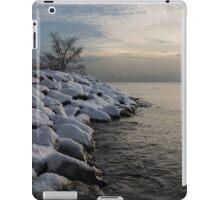 Clearing Snowstorm - Lake Ontario, Toronto, Canada iPad Case/Skin