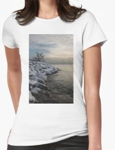 Clearing Snowstorm - Lake Ontario, Toronto, Canada Womens Fitted T-Shirt