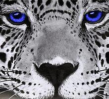 Blue eyes. by EllEssDee