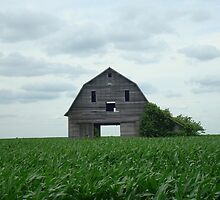 Barn on 150th by pjperrine