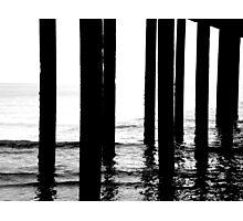 Sea Stilts Photographic Print
